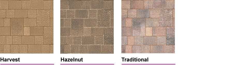 Tegula Colours